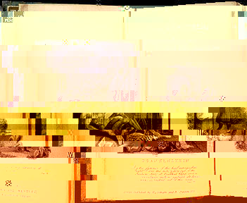 Mary shelley wollstonecraft frankenstein audiobook mp3 etext no fandeluxe Image collections
